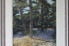 Scots Pines in late summer by Heather Strong