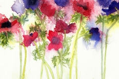 Anemones by Penny Silverthorne